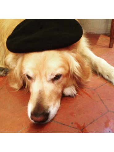 Authentic French Beret